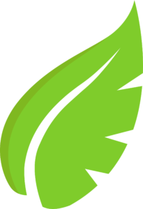 LEAF DIGITAL ICON